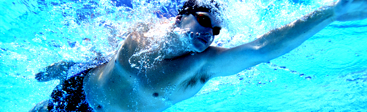 Banner   adult swim