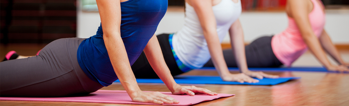 Banner   hatha yoga