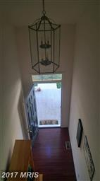 46129 Seabiscuit Court Photo #7