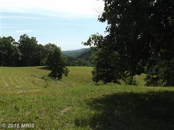 1257 Seeders Road Photo #3