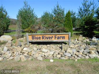 2952 OLD BLUE RIDGE TPKE #TURNPIKE Photo #4