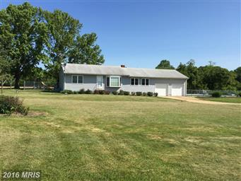 11878 Browntown Road Photo #17