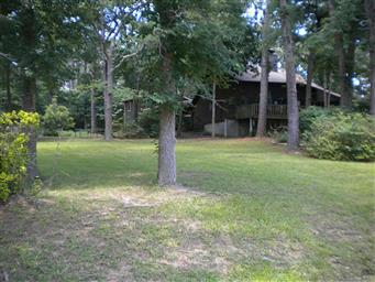 4565 Forest View Drive Photo #3