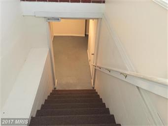 10916 Donelson Drive Photo #13