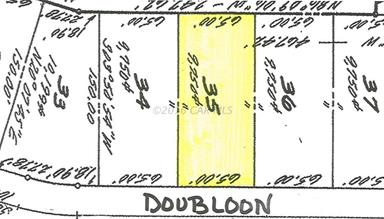 37316 DOUBLOON DR Photo #3