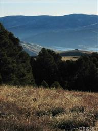 2855 Ridge Route Drive Photo #27