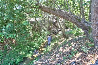 1056 San Juan Grade Road Photo #41