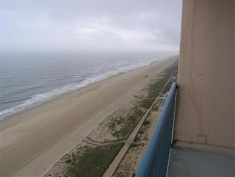 11000 Coastal Highway #1811 Photo #43