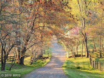 437 Yancey Road Photo #20