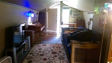 833 Driftwood Lane Photo #12