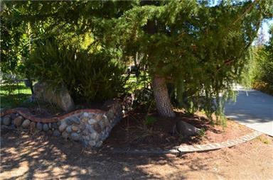 50051 Deer Meadow Way Photo #48