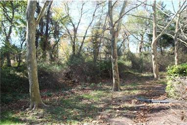 18490 Carters Grove Circle #2 Photo #23