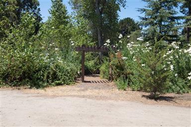 131 Hacienda Carmel Photo #21