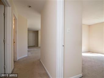 110 Timberlake Terrace #2 Photo #13