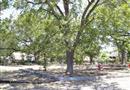 2113 W Gerald Avenue, San Antonio, TX 78211