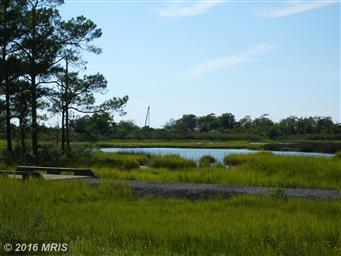 2342 Hoopers Island Road Photo #6