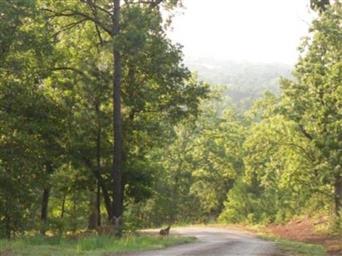 331 Private Road 8454 Photo #31