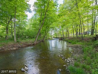 1389 Creek Road Photo #2