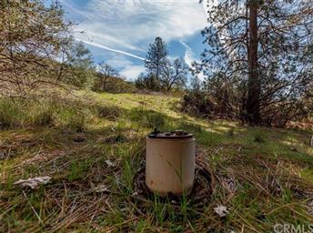 49880 Sierra Robles Drive Photo #50