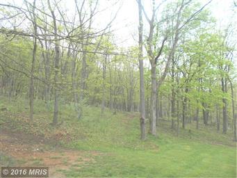 315 Meadow View Lane Photo #28