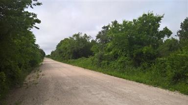 3801 County Road 271 Photo #17