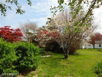 2568 Hoopers Island Road Photo #5