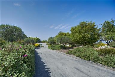 25663 Montebella Drive Photo #65