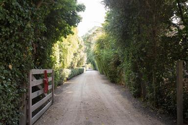 8990 Carmel Valley Road Photo #49