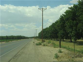 15675 N Loop Road Photo #7