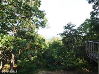129 Jalapa Trail Photo #7