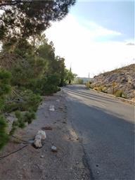 24 Sierra Crest Drive Photo #18