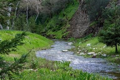 45650 Carmel Valley Road Photo #3