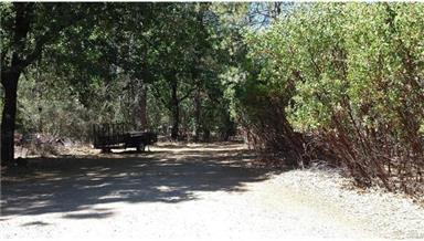 14938 Spruce Grove Road Photo #48
