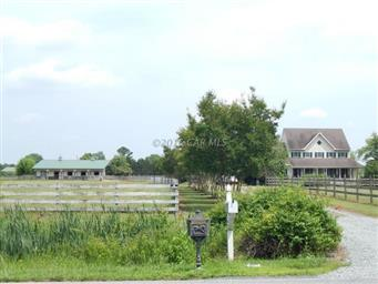 5671 N Upper Ferry Road Photo #43