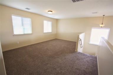 11037 Coyote Ranch Ln Photo #17