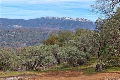 50645 Falcon View Road Photo #45