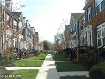 300 Dixon Street #506 Photo #3