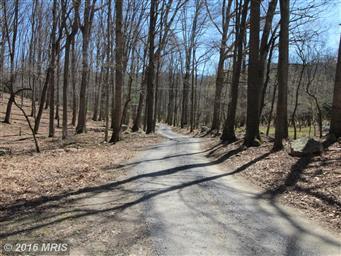 264 Posy Hill Road Photo #29