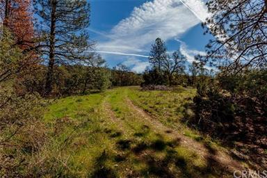 49880 Sierra Robles Drive Photo #51