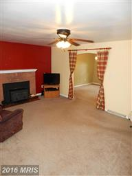 1007 Lovelace Way Photo #7