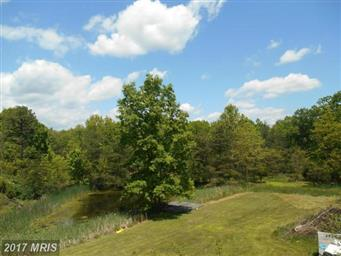 213 Butcher Hollow Road Photo #21