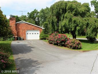 13719 Woodland Heights Drive Photo #28