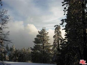 29501 Goldspike Road Photo #24