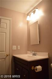 1155 Meander Drive Photo #15
