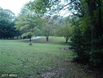 29040 Autumnwood Drive Photo #15