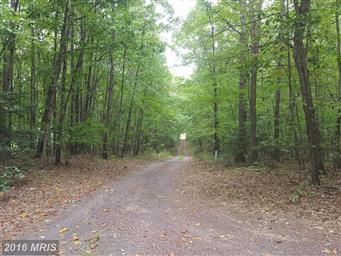 7046 Wolds Lane Photo #11