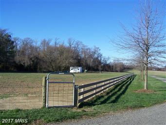 13744 Still Pond Road Photo #4