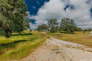 3979 Oak Grove Road Photo #64