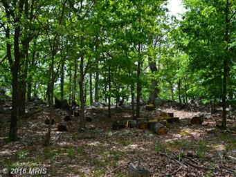 173 Pleasant Valley Dr Photo #18