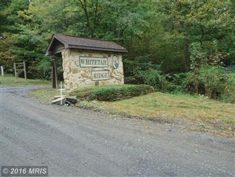 1300 Whitetail Ridge Road Photo #28